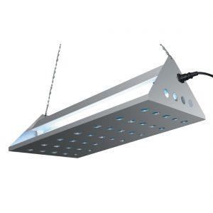Eazyzap Stainless Steel Glue Trap
